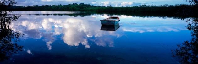 Cloud Fishing